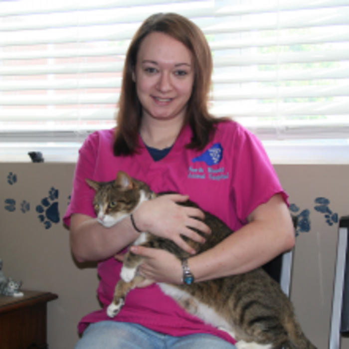 Megan  Sloan </br> Veterinary Assistant photo